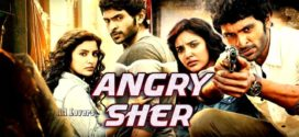 Angry Sher 2019 Hindi Dubbed 720p HDRip 1.4GB & 300MB x264 Download