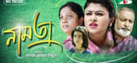 Namta 2019 Bangla Full Movie 720p HDRip 700MB ESubs x264 Download