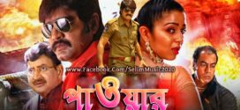 Power 2019 Bangla Dubbed Full Movie HDRip 700MB X264 Download