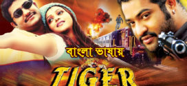 Tiger 2019 Bangla Dubbed Full Movie HDRip 700MB x264 Download
