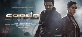 Saaho 2019 Hindi Full Movie 720p Non Retail DVDRip 700MB x264 *Best HD Print*